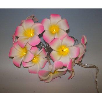 Dekorativní LED řetěz - magnolie - teple bílá 10 LED D33471