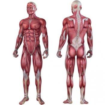 Posilovací masážní válec - FITNESS ROLLER MOVIT růžová