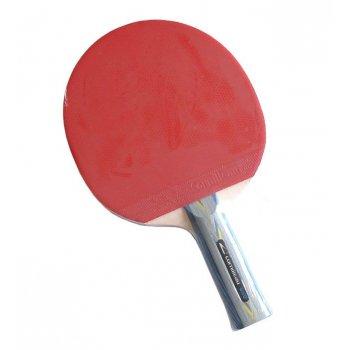 Pálka na stolní tenis