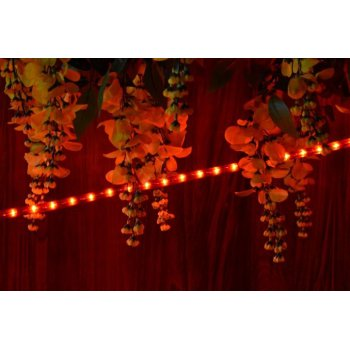 Světelný kabel 10 m - červená, 360 minižárovek