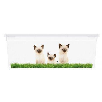 Plastový box KIS Puppy and Kitten - XS